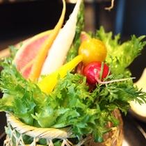 富士通「キレイレタス」低カリウムレタス&契約農家さんに特注のミニ野菜を特製豆腐ディップで♪