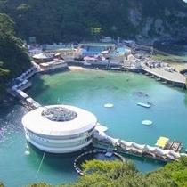 下田海中水族館全景