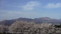ホテルから阿蘇五岳を桜のシーズン