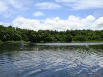夏のカヌー体験♪
