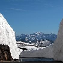 ◇乗鞍岳雪の壁から槍穂高を望む
