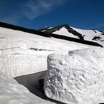 ◇乗鞍岳への道路は雪の壁!