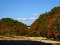松川渓谷紅葉