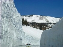 八幡平雪の回廊