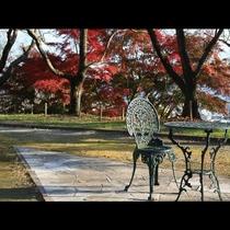 赤に黄色に色めく秋の烏帽子山公園。実り豊かな秋の景色に、ひととき日ごろの喧噪を忘れることができます。