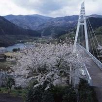 松川湖 吊り橋