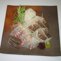 別料理 鯛のお造り 通年