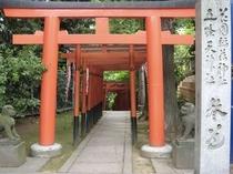 上野 花園神社