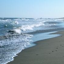 大洗海岸500