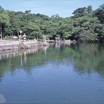 天然の水族館!萩・明神池までお車で約20分♪