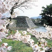 桜の名所「萩城址・指月公園」までお車で約7分♪