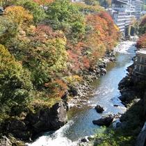 ☆利根川を臨む客室からの眺め(秋の紅葉)