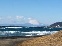 平砂浦海岸から見た富士山(1月)