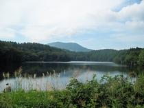 斑尾高原 希望湖