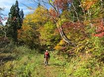 斑尾高原 紅葉の袴岳へ