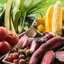 十勝産の野菜をたっぷり、旬の美味しさとパワーをお届けします