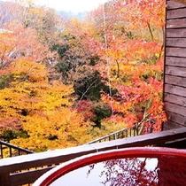 露天風呂付客室・もみじの間「紅葉の季節」