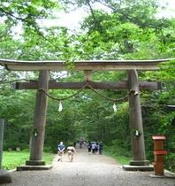 戸隠神社(奥社へ続く)