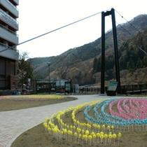 春一番風街道2011