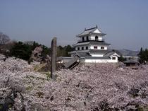 春の白石城