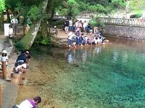 【弁天池・秋芳町】コバルトブルーに染まった神秘と伝説の湧水池。日本名水百選に選定されています。