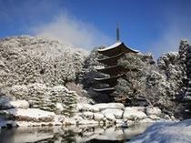 瑠璃光寺五重塔(冬)