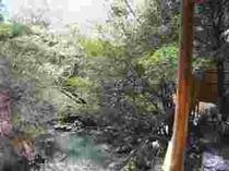 110422-風呂から川1