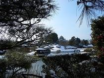 冬の後楽園