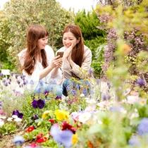 花てらす庭園