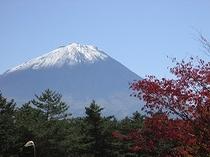 11月の富士
