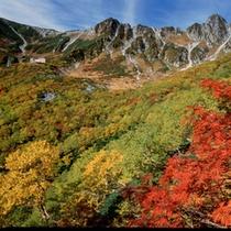 千畳敷カールの紅葉