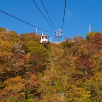 *秋の景色/ロープウェーからの景色も絶景!山頂からの眺めが楽しみ♪