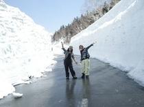春山バスで雪の回廊へ