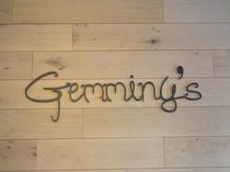 Gemminy's