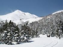 Mt.Norikura tour course