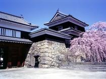 上田城・千本桜