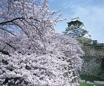 大阪城〜桜〜