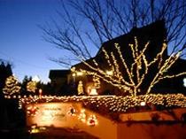 クリスマスの外観夜景
