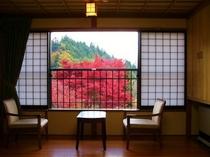 窓からの紅葉