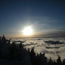 樹氷と雲海