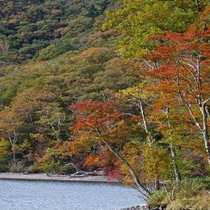【紅葉】赤城山(見ごろは10月下旬から11月上旬頃となります。天候などで前後します。)