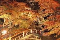 河鹿橋(秋)