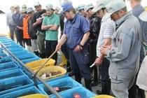 宮古魚市場の様子
