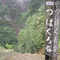 スカイラインの名所・吾妻八景のひとつ「つばくろ谷」(冬季閉鎖)