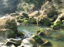 お宿前の苔むした天降川