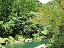 露天風呂からの天降川