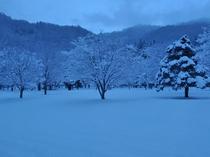 【庭園・冬】