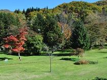 【庭園・秋】秋の庭園風景、パークゴルフが楽しめます
