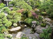 静かなたたずまいの庭