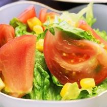 夕食-高原野菜のサラダ。心温まる手作り家庭料理が並びます。